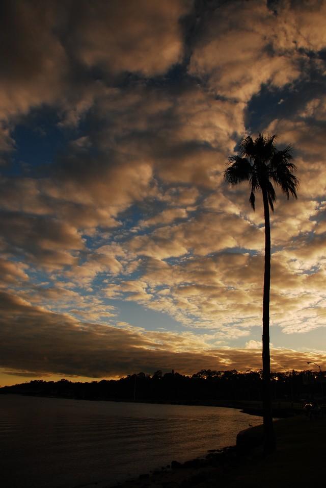 Perth_0222