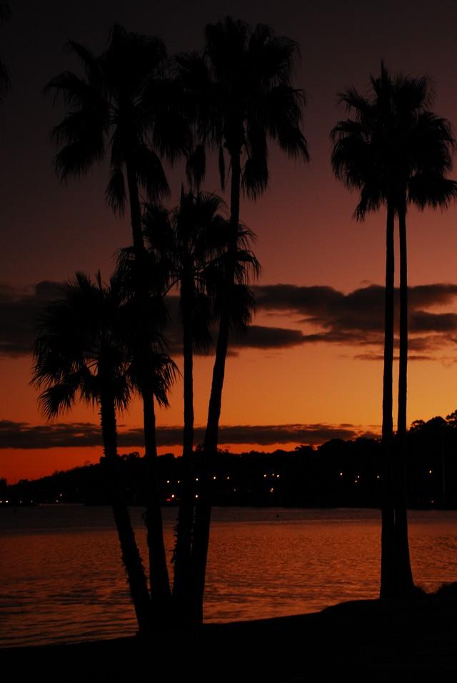 Perth_0336