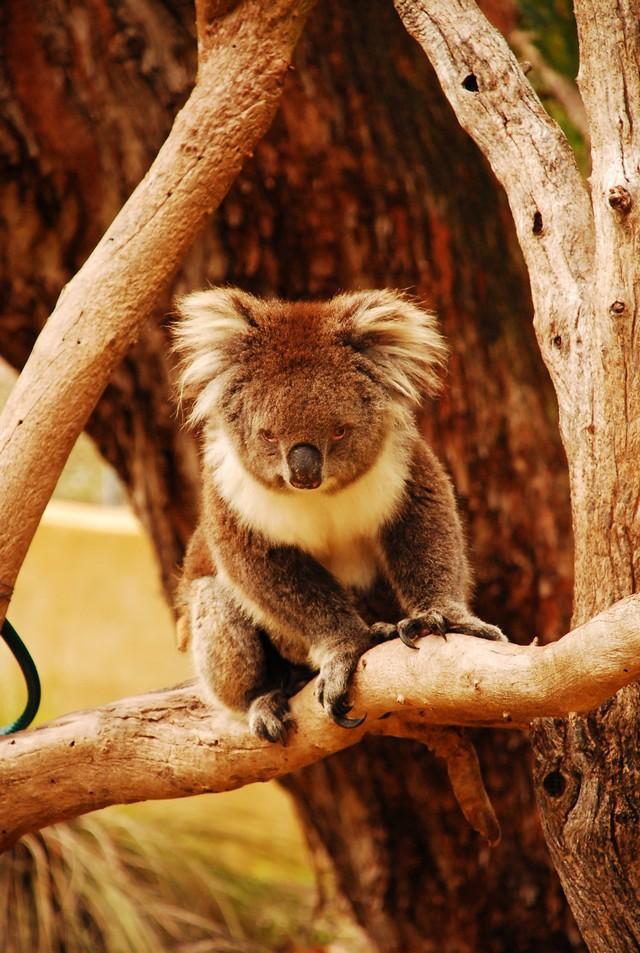 西北澳四日遊_0010