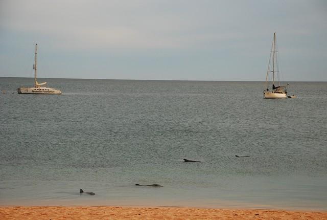 西北澳四日遊_0424