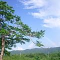 東華20080923-05.JPG