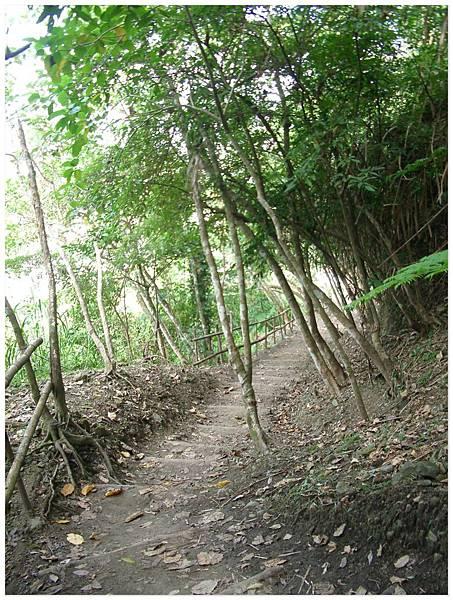 步道都是用自然的方式架設的