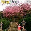 2014-01-30-09-34-10_deco[1]