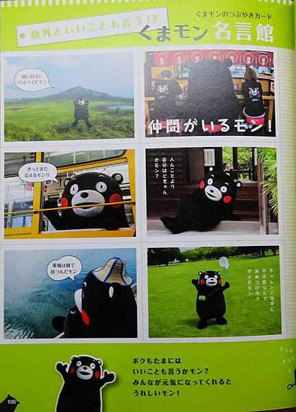熊本熊寫真集 (64).jpg