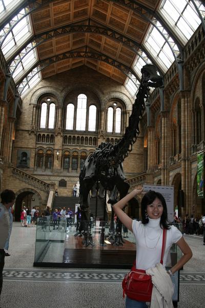 很大的化石與展示廳