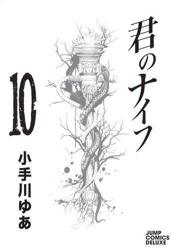 君のナイフ 10 (ジャンプコミックスデラックス) コミック – 2013.jpg