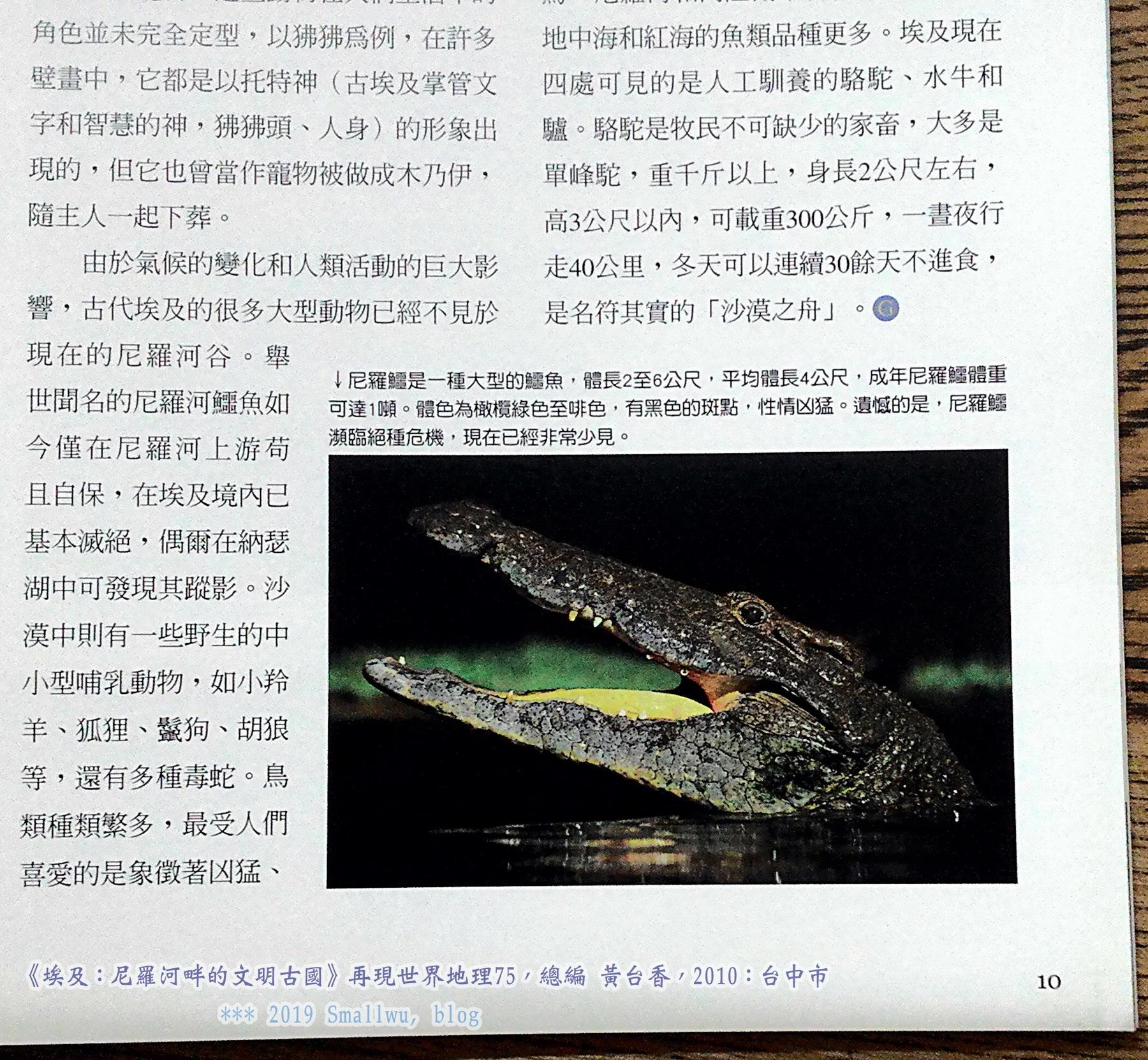 再現世界地理75-埃及-尼羅河畔的文明古國_03 埃及鱷魚.jpg