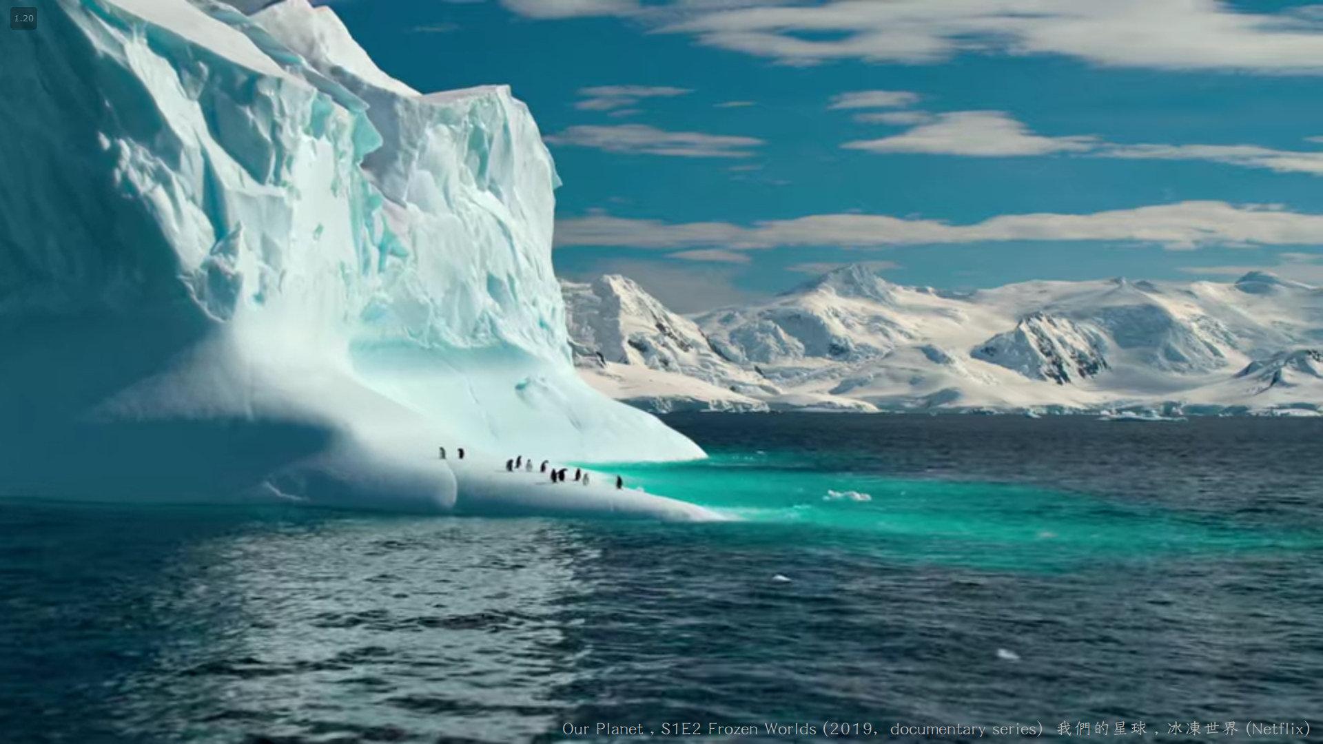 我們的星球 (Our Planet , 2019紀錄片) S1E2 冰凍世界 Frozen Worlds 007---.jpg