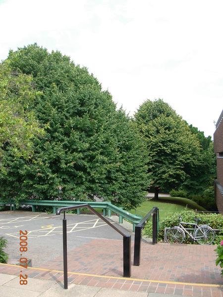 Exeter大學.JPG