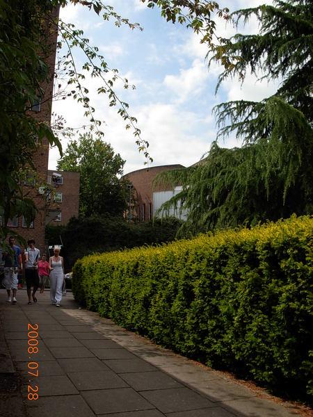 Exeter大學 (1).JPG