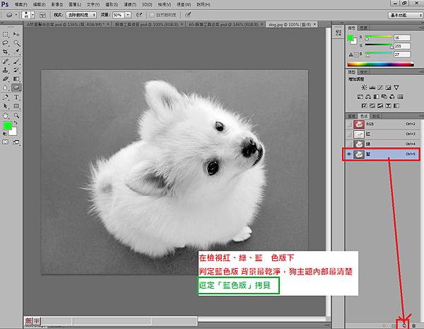 1.RGB色版判斷:,藍色版 背景最乾淨,狗主題內部最清楚,選拷貝藍色版.png