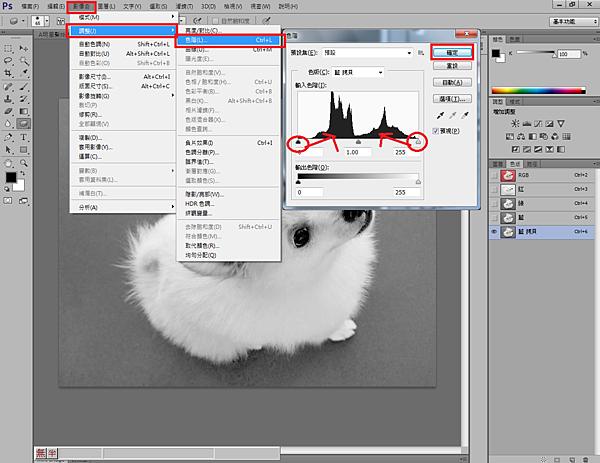 2.影像/調整/色階 調整黑和白色階槓桿 向中間拖曳,使其背景變白,主題清楚.png