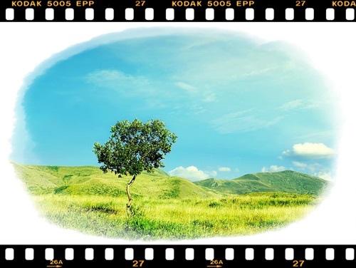 Amazing_Landscape_31