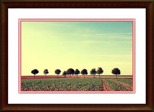 Amazing_Landscape_24_II.jpg