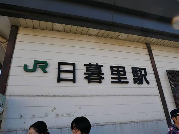 P1010124.JPG