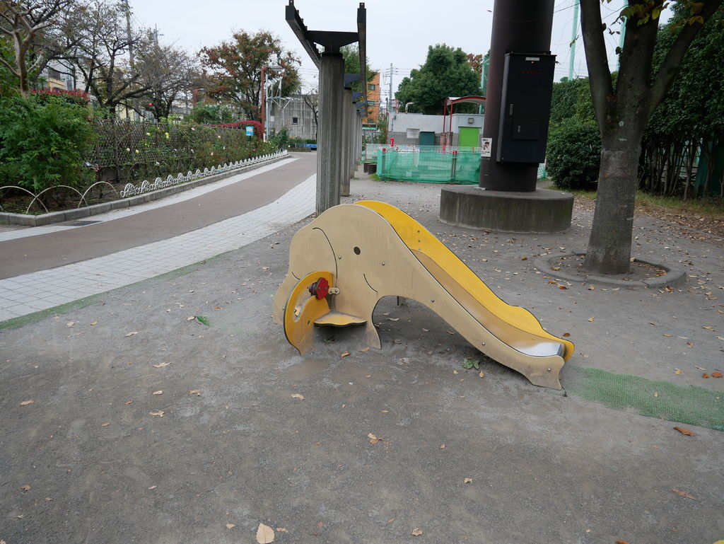P1020114.JPG