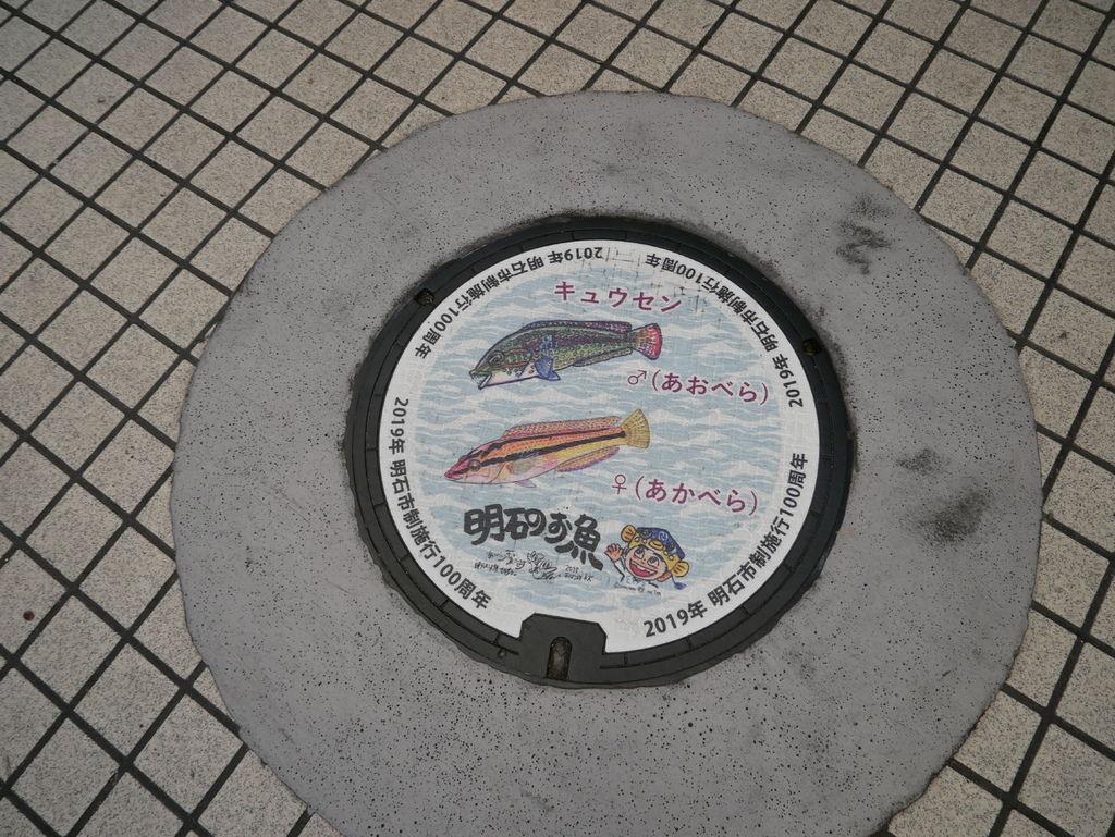 P1090068.JPG
