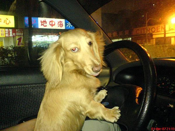 開車不專心