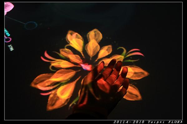 IMG_6671.jpg