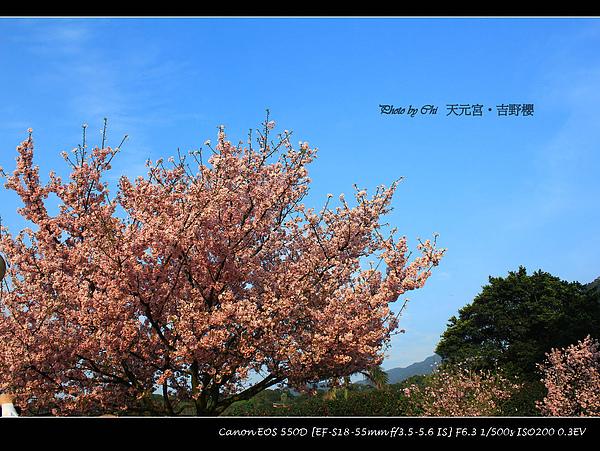 IMG_5707.jpg