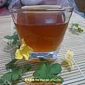 自己煮清涼消暑的青草茶