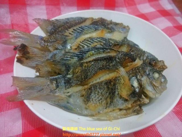 原味乾煎鯛魚