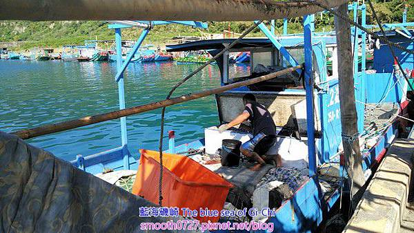 FRP一體成型漁筏與膠管漁筏收購計價標準表