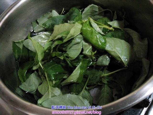 燙野菜-赤道櫻草