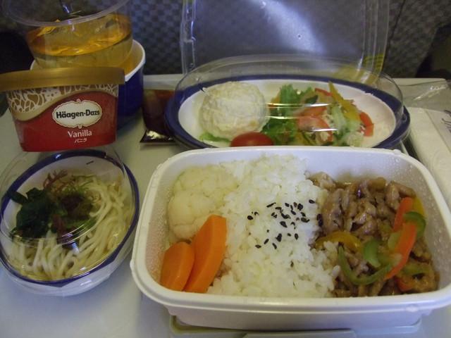 飛機餐 沒得選 豬肉燴飯/禾風涼麵/蔬菜馬鈴薯莎拉/蘋果汁