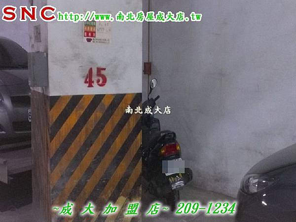 IMAG0353