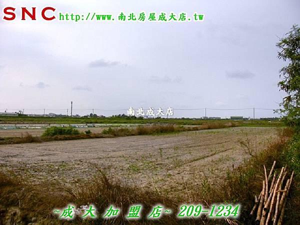 CIMG0994 (复制)
