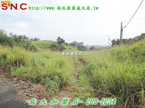 DSCN9085