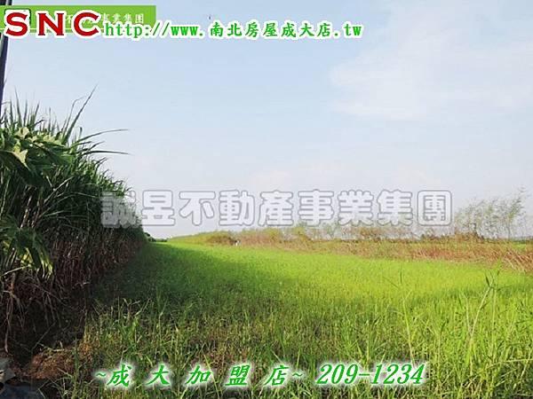 DSCN2192