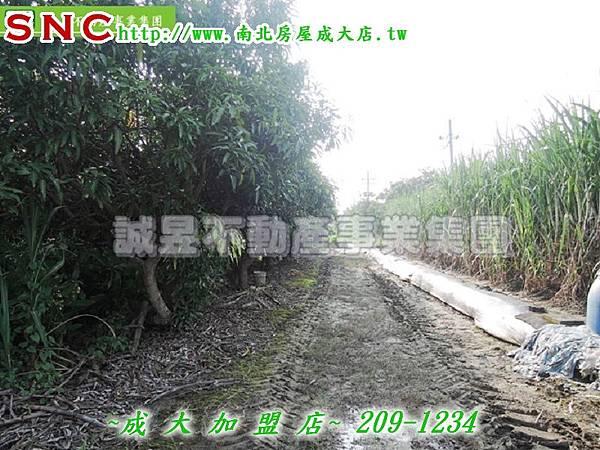 DSCN2195