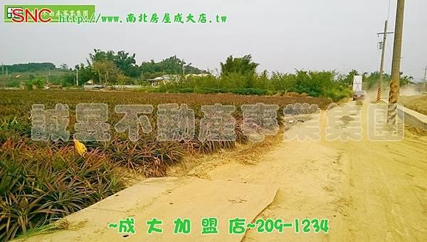IMAG8167