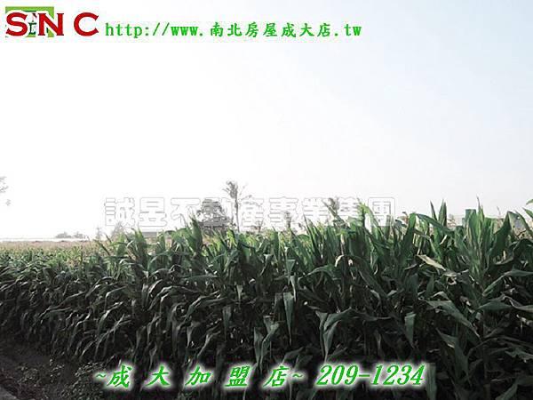 DSCN3763