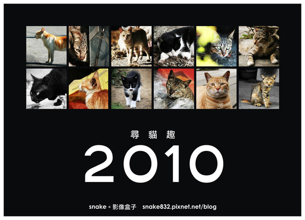 2010尋貓趣00.jpg
