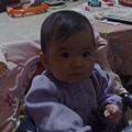 20090429597.jpg