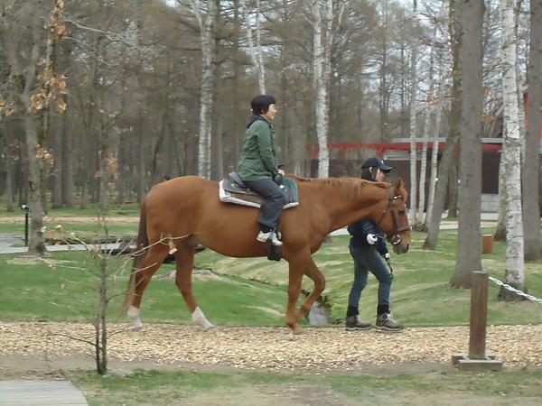騎馬體驗‧北方馬の國公園‧苫小牧