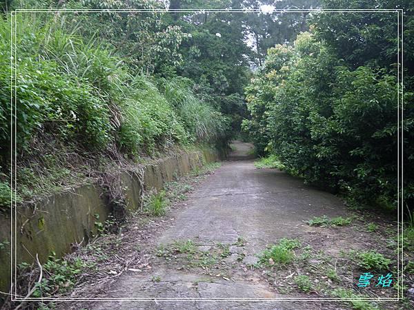 寶山 迴龍步道 A06