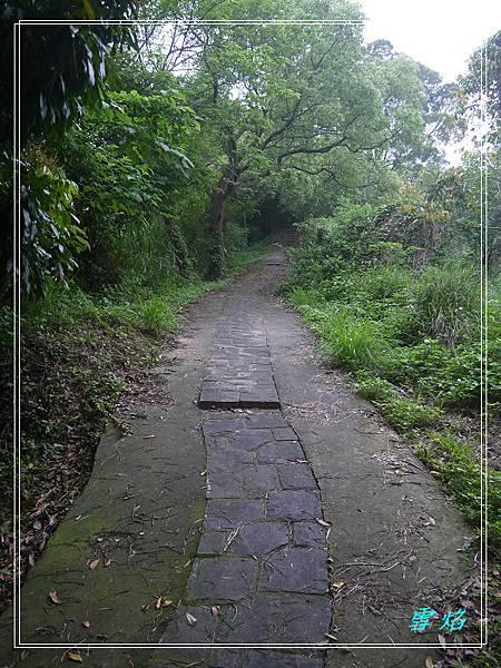 寶山 迴龍步道 A07