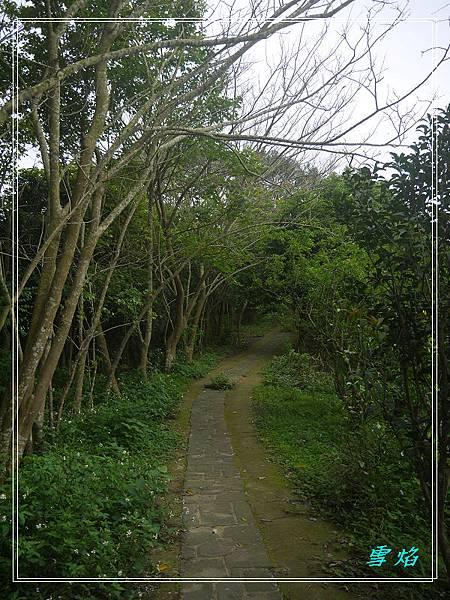 寶山 迴龍步道 A10