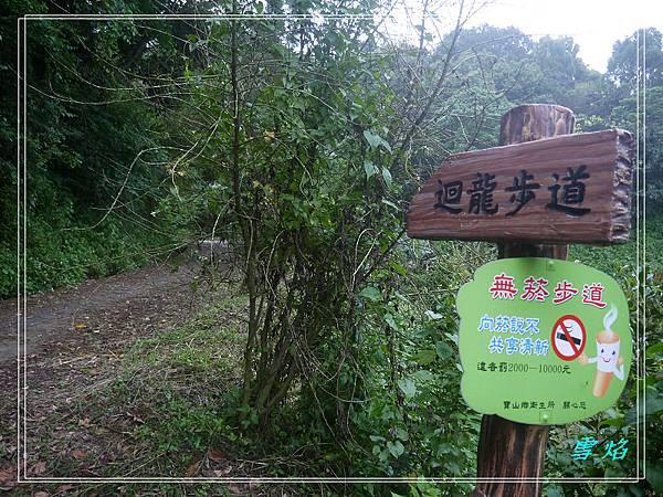 寶山 迴龍步道 A17