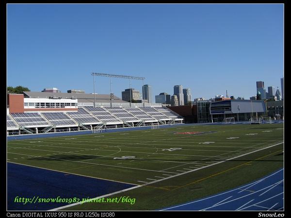 多倫多大學之球場