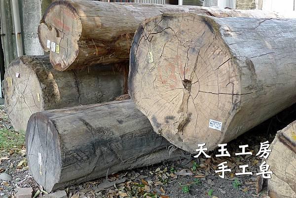 鋸木廠 2