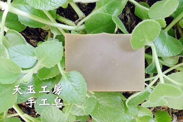 左手香皂 2