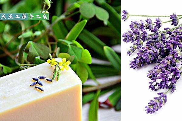 薰衣草呵護皂 mix 2-1