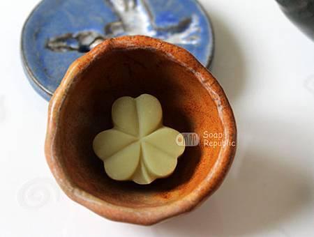 mini-lucky clover-2.jpg