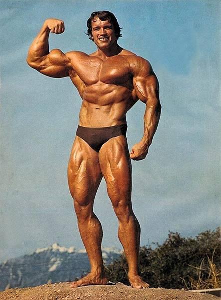 Arnold 02