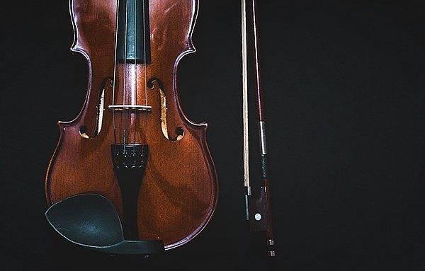bowed-instrument-1853324_640.jpg